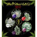 Indica Mix E - semená 10 ks feminizovaná semená Green House Seeds
