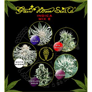 Sativa / Indica Mix E - semenná banka Green House Seeds - 5 ks semienok feminizovaných