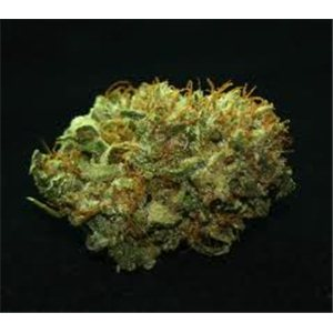 Mr Nice seeds - NL5 x Haze 18 ks
