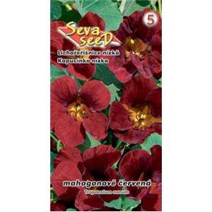 Kapucínka nízka - mahagónovo červená-semienka rastliny kapucínka 2g