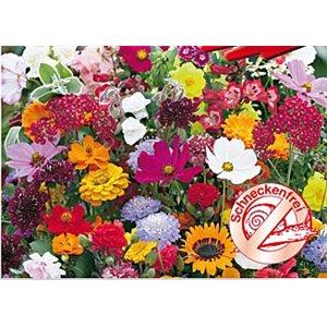 Kvetinová symfónia rezistentné šnekua