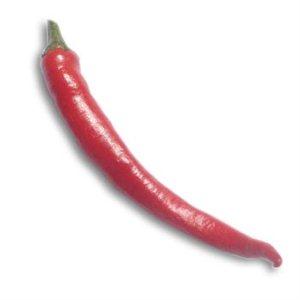 Chilli Kórejskej (rastlina: capsicum) - 7 semien chilli
