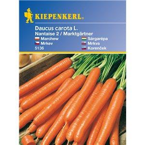 Mrkva nantaise Marktgärtner - semená mrkvy
