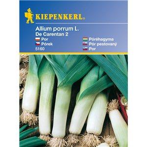 Pór De Carentan 2 - semená póru