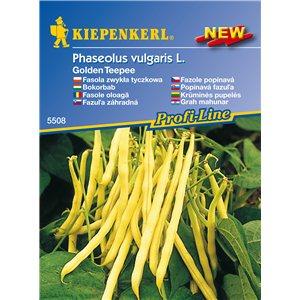 Kríčková fazuľa Golden teepee - semená fazule