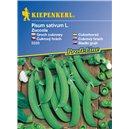 Cukrový hrášok Zuccola - semená hrachu