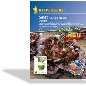 Šalát Gaugin - semená šalátu