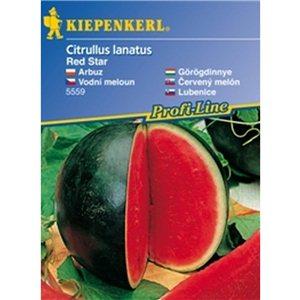 Vodný melón Red Star - semená vodného melónu