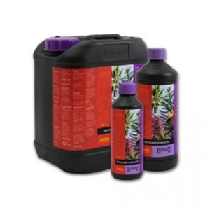 B&39cuzz Coco Bloom Stimulator 5L