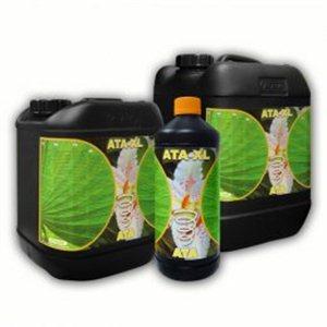 ATA - XL 5L