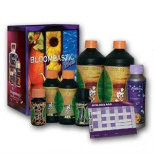 ATA / AWA Bloombastic 1 Box