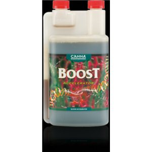 CannaBoost 0,25l