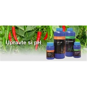 Essential pH UP + 250ml