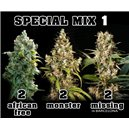 Mix 1 - Af, Mo, Mi - 6ks feminizovaných semien Eva Seeds