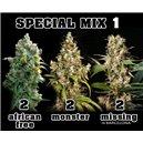 Mix 1 – Af,Mo,Mi – 6ks feminizovaných semen Eva Seeds
