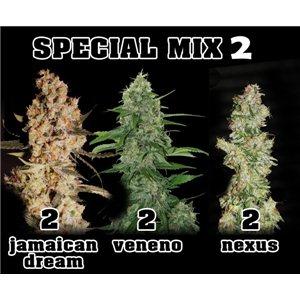 Mix 2 - Vo, Jd, Nie - 6ks feminizovaných semien Eva Seeds