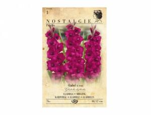 Gladiolus PLUMTART/FIDELIO 7ks