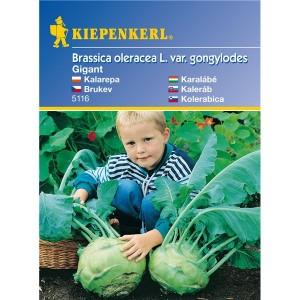 Kapustovité Gigant - semená hlúbovej zeleniny