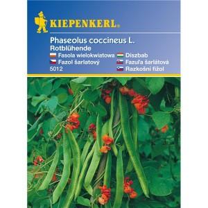 Fazuľa nádherná, červeno kvitnúce - semená fazule