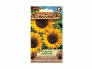 Slunečnice jednoduchá 30 semen