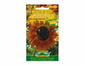 Slunečnice roční jednoduchá Crimson Queen 15 semen