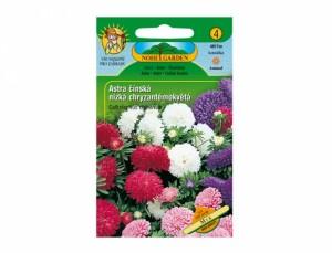 Astra čínská nízká chryzantémokvětá Mix 150 semen
