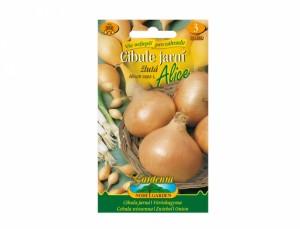 Cibuľa jarná žltá Alice 350 semien