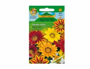 Gazánie zářivá Mix 30 semen