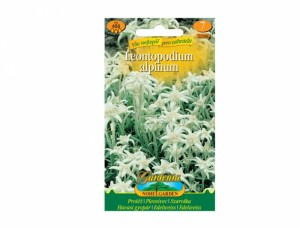 Leontopodium alp / Plesnivec /