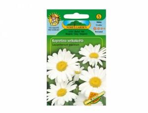Margarétka veľkokvetá White 160 semien