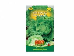 Salát hlávkový letní ledový Pražan 350 semen