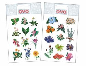 OVO obtlačky kvetinky