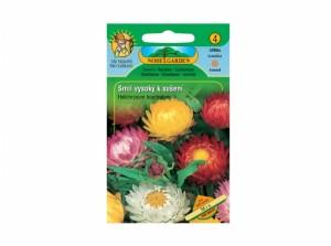 Helichrysum br / slamiha