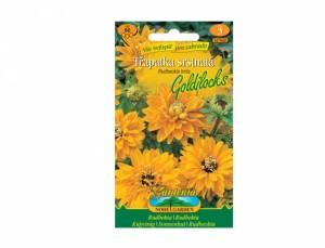 Rudbeckia hirta / echinacea / žl-or (Goldilocks)