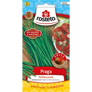 Pažítka - Praga