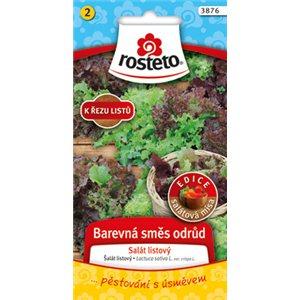 Salát kadeřavý k řezu - Barevná směs odrůd