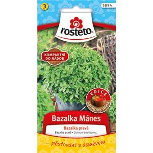 Bazalka pravá - Mánes