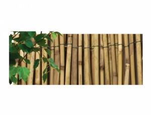 Rohož / trstina džungl.EXTRA / 1,5 x5m