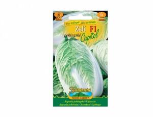 Zelí pekingské Capitol F1 30 semen