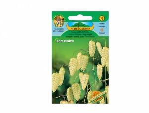 Briza maxima Flowers annual 100 semien