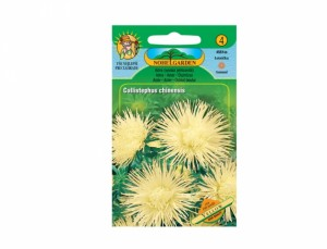 Astra vysoká ihlicovitú Yellow 150 semien