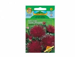 Astra čínska vysoká ihlicovitú Red 150 semien