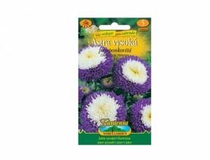 Astra vysoká pomponkovitá 120 semien