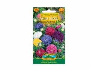 Astra nízká chryzantémokvětá Mix 180 semen