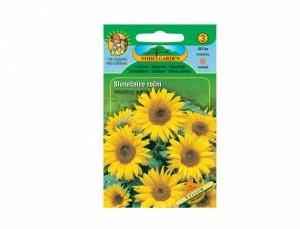 Slunečnice roční Yellow 25 semen