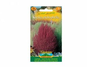 Cypruštek - BYTELA 150 semien