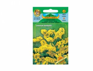 Limonka k sušení Yellow 65 semen