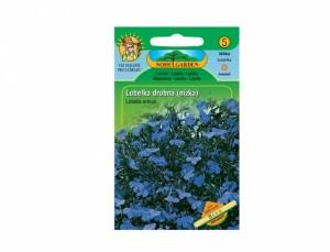 Lobelka drobná nízká Blue 1000 semen