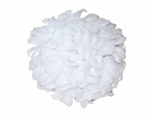 Chryzantéma bílá - semínka