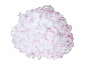 Chryzantéma bílá lila - semena